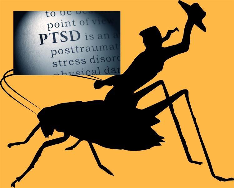 Ento Nation PTSD Cowboy Crickets episode