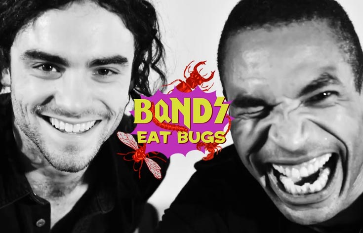 Bands Eat Bugs