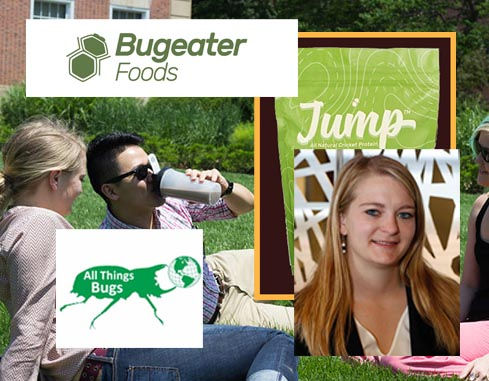 Bugeater Foods All Things Bugs